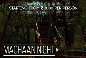 machaan-night-rate