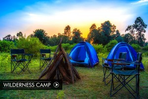 wilderness-camp_compressed