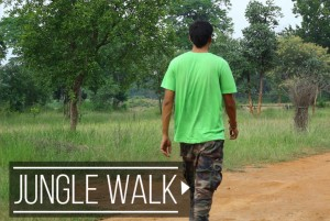jungle-walk