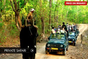 private-safari