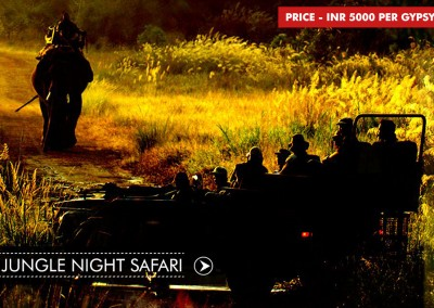 NIGHT SAFARI IN BANDHAVGARH
