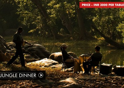 JUNGLE DINNER IN BANDHAVGARH