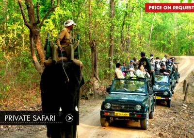 PRIVATE SAFARI IN BANDHAVGARH