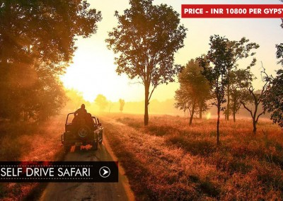 SELF DRIVE SAFARI IN BANDHAVGARH