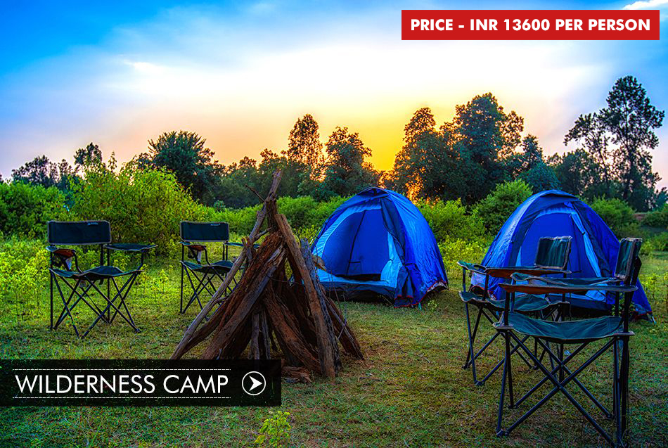WILDERNESS CAMP IN BANDHAVGARH