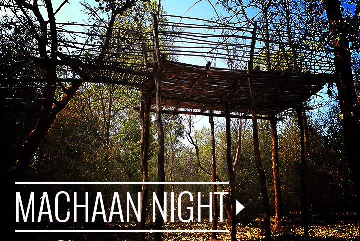 MACHAAN NIGHT IN BANDHAVGARH